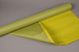 A401QX Rouleau de papier kraft vert olive / vert 0,8cm x 50m