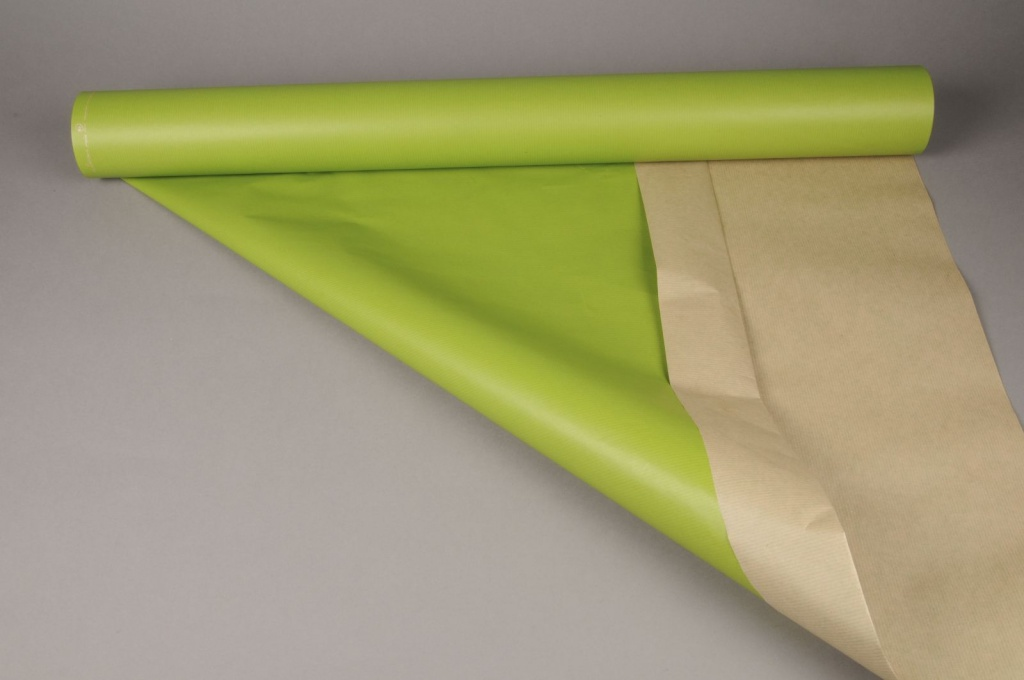 A295QX Rouleau de papier kraft vert pomme 0,8 x 50m