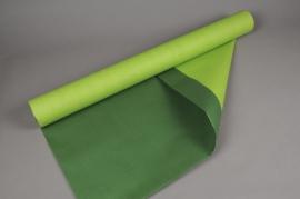 A730QX Rouleau de papier kraft vert / vert pomme 0,8x50m
