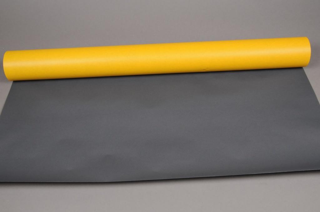 A301R7 Rouleau kraft double-face jaune / noir 80cm x 50m
