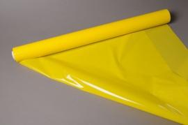 A231BD Rouleau polypro jaune 0.70x50m