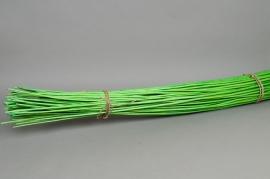 rv09sx Osier écorcé  vert clair H180cm