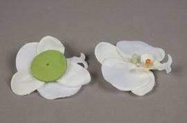 x042dh Sachet de 4 phalaenopsis artificielle blanc D9cm