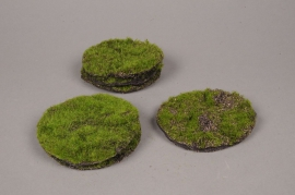 x136fd Sachet de 6 galets plat en mousse vert D10cm