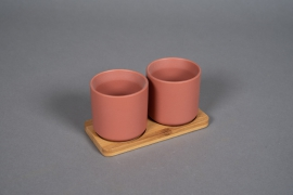 Sienna ceramic planter duo on a bamboo tray