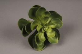 x404mi Succulente artificielle verte H20cm