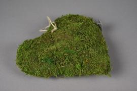 SV19U7 Natural moss heart D26cm