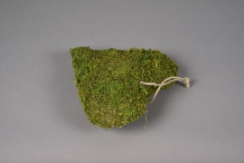 SV20U7 Natural moss heart D21cm