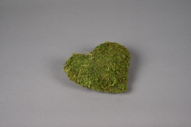 SV21U7 Natural moss heart D16cm
