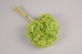 t445ab Hortensia préservé vert H40cm