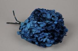 w445ab Hortensia préservé bleu foncé H33cm