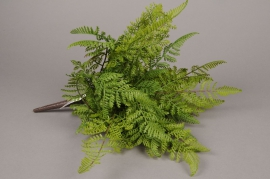 x001jp Artificial green branch of nephralepis H38cm
