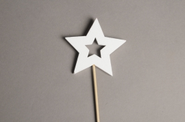 X001PH Set of 10 wooden star picks H29cm