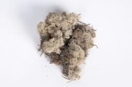 x004el Natural iceland moss 500g