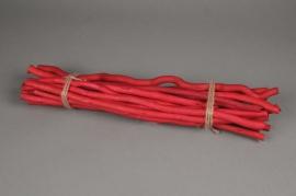 x004sx Fagot de 15 kuwas rouge hauteur 50cm