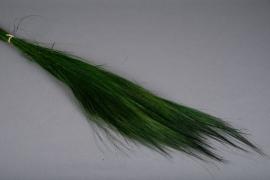 x005ab Barba séché vert 200gr