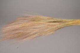 x006ab Dried natural barba 200gr