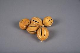 x010lw Citron jaune entier séché 250g