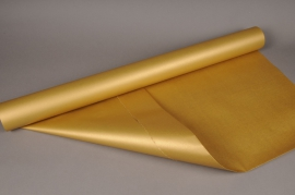 X010QX Double sided kraft paper roll gold 80cmx40m 60g