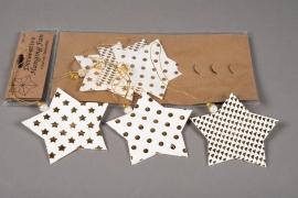 X010U3 Sachet de 6 étoiles déco papier blanc et or D12cm