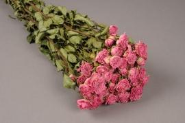 x011kh Botte de rose rose séchée H49cm