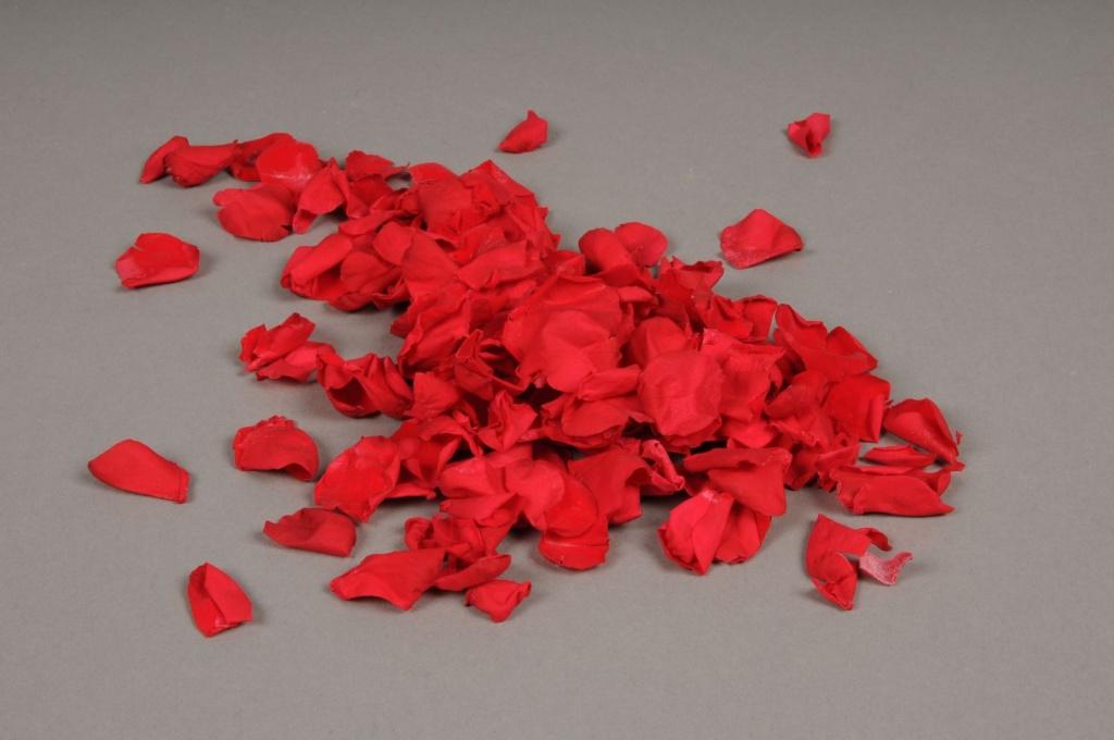 x011vv boîte de pétales roses rouges stabilisées 150gr