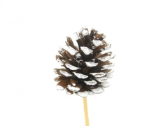 X012Y8 Set of 12 white pine cone on pic 7cm H20cm