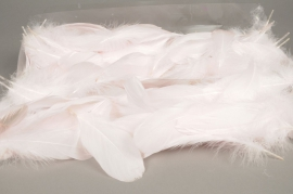 x013ek Box of feathers ligth pink 25gr