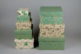 X017HH Set de 8 boîtes en carton vert et or