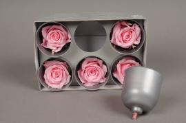 x017vv Boîte de 6 roses préservées rose
