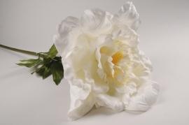 x022fz Pivoine artificielle blanche H105cm