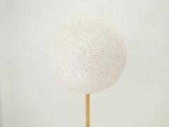 X023Y8 Set de 12 pics boules pailletées blanc D5.5 H50cm