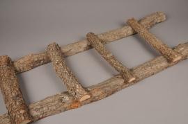 x024hm Echelle en bois brut H100cm