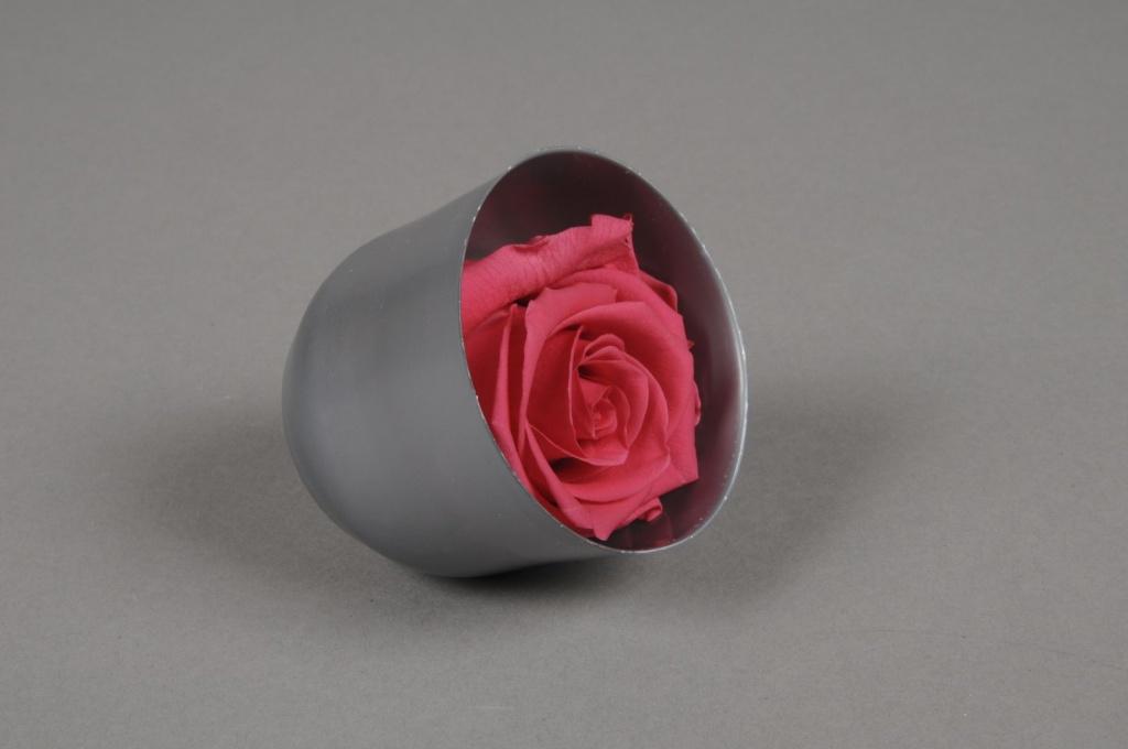 x024vv Boîte de 6 roses préservées fuchsia