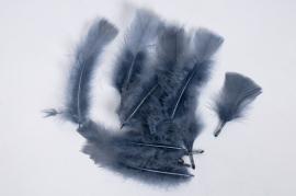 x027ci Boîte de plumes grises 40g