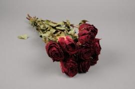 x028kh Botte de rose rouge séchée H49cm