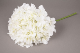 x031jp Hortensia artificiel blanc H45cm