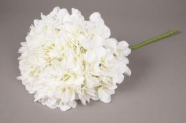 x031jp White artificial hydrangea H45cm