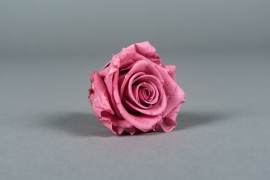 x031vv Box of 6 preserved blush pink roses