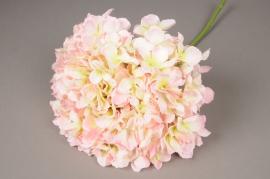 x033jp Cream and pink artificial hydrangea H45cm