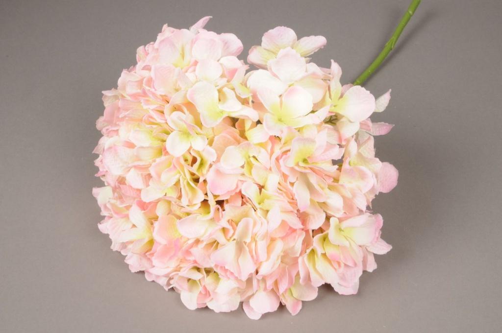 x033jp Hortensia artificiel crème et rose H45cm