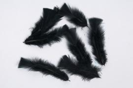 x034ci Box of black feathers 40g
