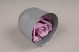 x036vv Box of 6 preserved lilac roses
