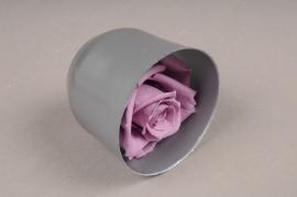 x036vv Boîte de 6 roses préservées lavande