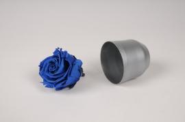 x040vv Boîte de 6 roses préservées bleues