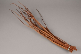 x045ab Botte de mitsumata marron H55cm