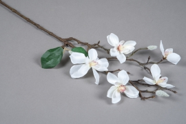 x045am White artificial magnolia branch H64cm