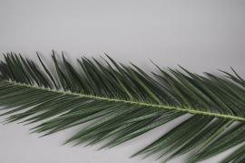 x045vb Feuille de phoenix artificiel vert H225cm