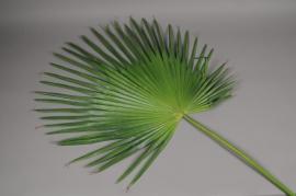 x051vb Camerus artificial green leaf H110cm