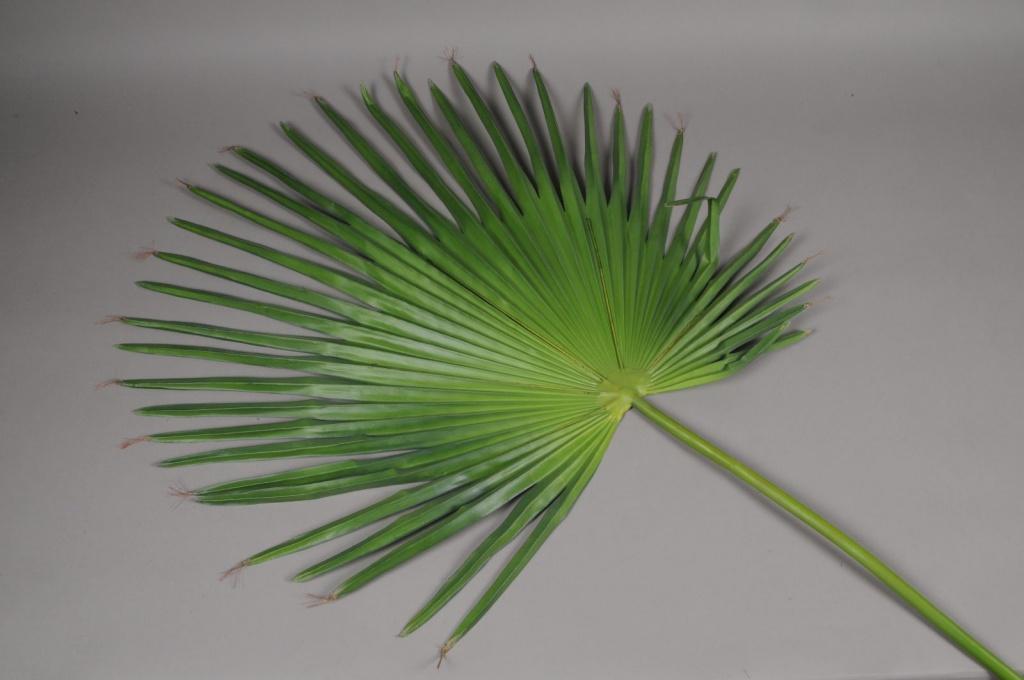 x051vb Feuille de camerus artificiel vert H150cm